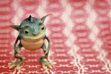 Frog Pixie by IgorSan