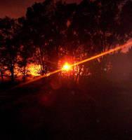 At Sunset by Aidan-Gull