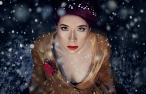 Winter fox by therockfox
