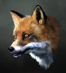 Fox for a change by Ketunleipaa
