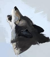 Howl by Ketunleipaa