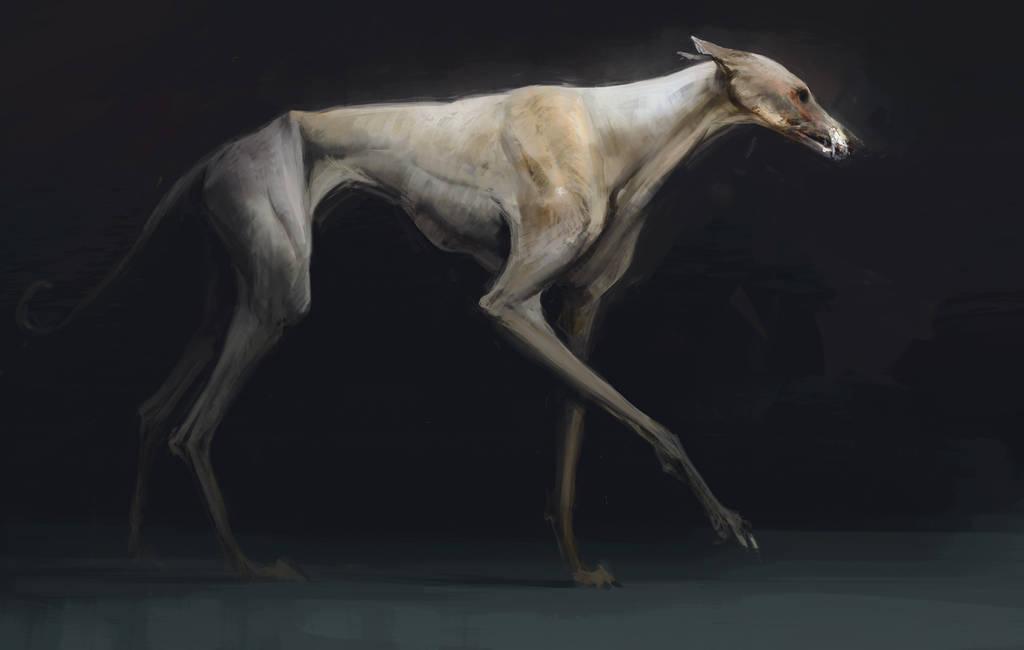 Some dog by Ketunleipaa