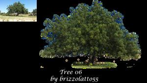 Tree 06 by Brizzolatto55