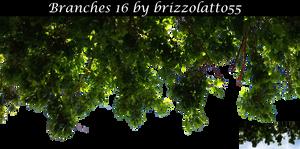Branches 16 by Brizzolatto55
