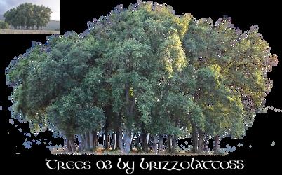 Trees 03 by Brizzolatto55