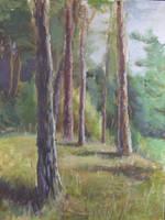 Fairy Forest by NelaTheFairy