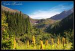 Valea Radului by iustyn