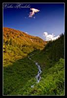 Valea Radului III by iustyn