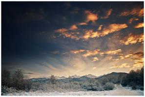 winter road by iustyn
