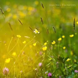 Among flowers by iustyn