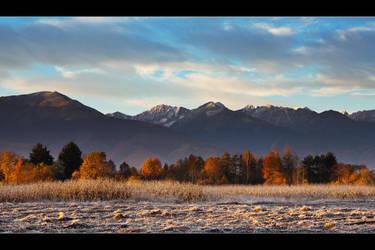 autumn III by iustyn