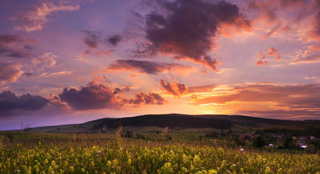 sunset  on hill by iustyn