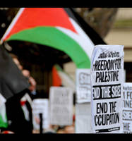 Free Palestine Demo 4 by xshayx