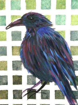 Raven by Cinnalynn
