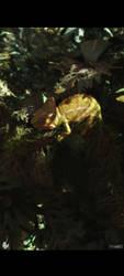 Chameleon by barrymdesigns