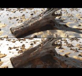 Beach by barrymdesigns
