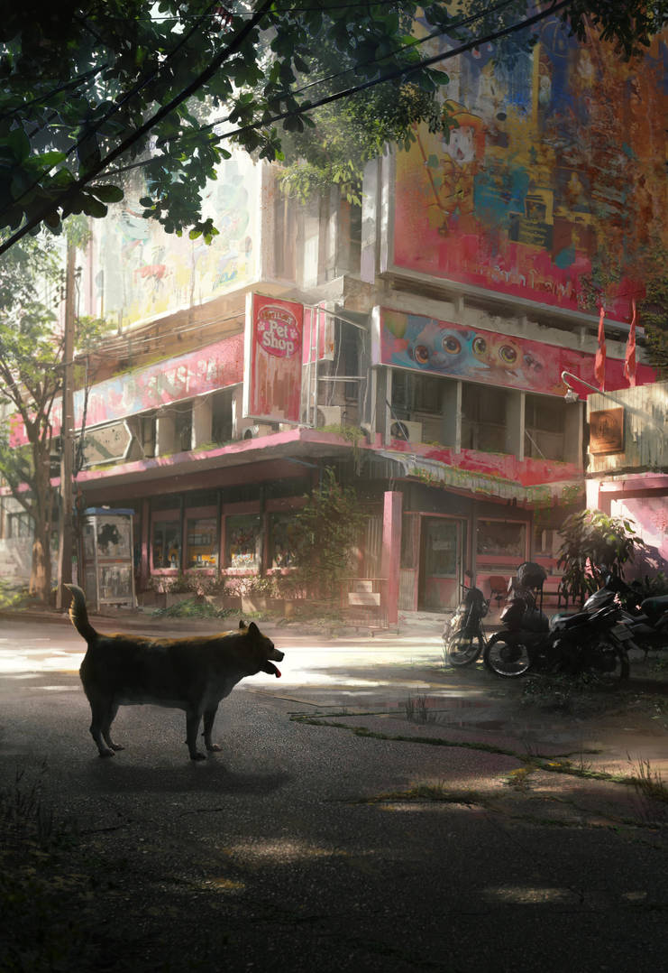 Doge by JonasDeRo