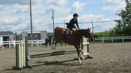 English 19 by vorbei-horse-stock