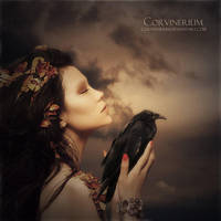 You'll Fly Again by Corvinerium