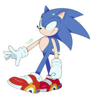 Soap Shoes Sonic by Pepe201