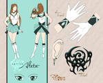 Sailor Aleta Character Sheet by dubird