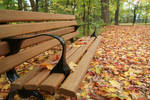 Bench by MrProsser42