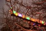 Glow by MrProsser42