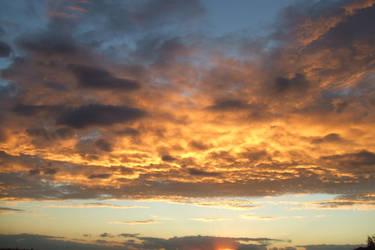 Sydney Sunset by Bowlen