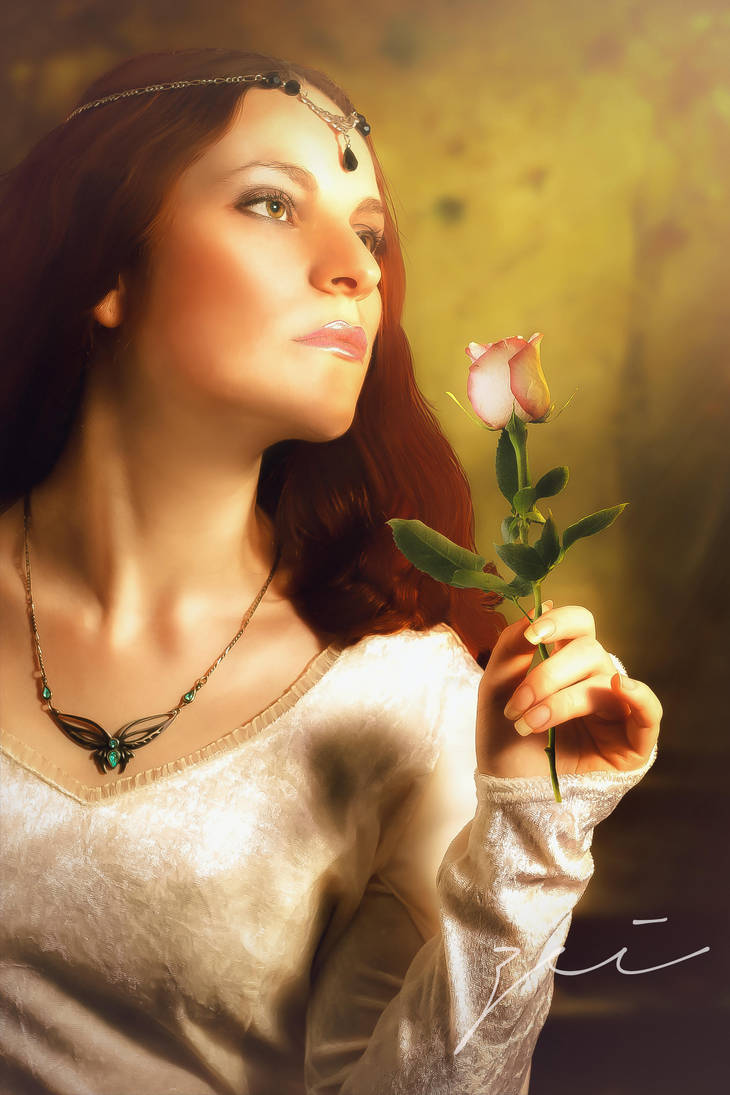 The last rose by zeiruch