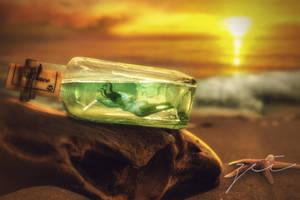 Bottle by zeiruch