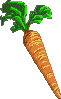 Carrot by far-from-earth