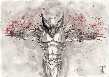Wolverine by Templesmith