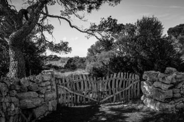 Mallorca 2 by pillendrehr