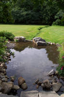 Pond 03 by zvaellastock