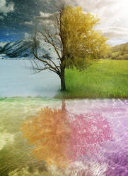 4 Seasons by PSHoudini