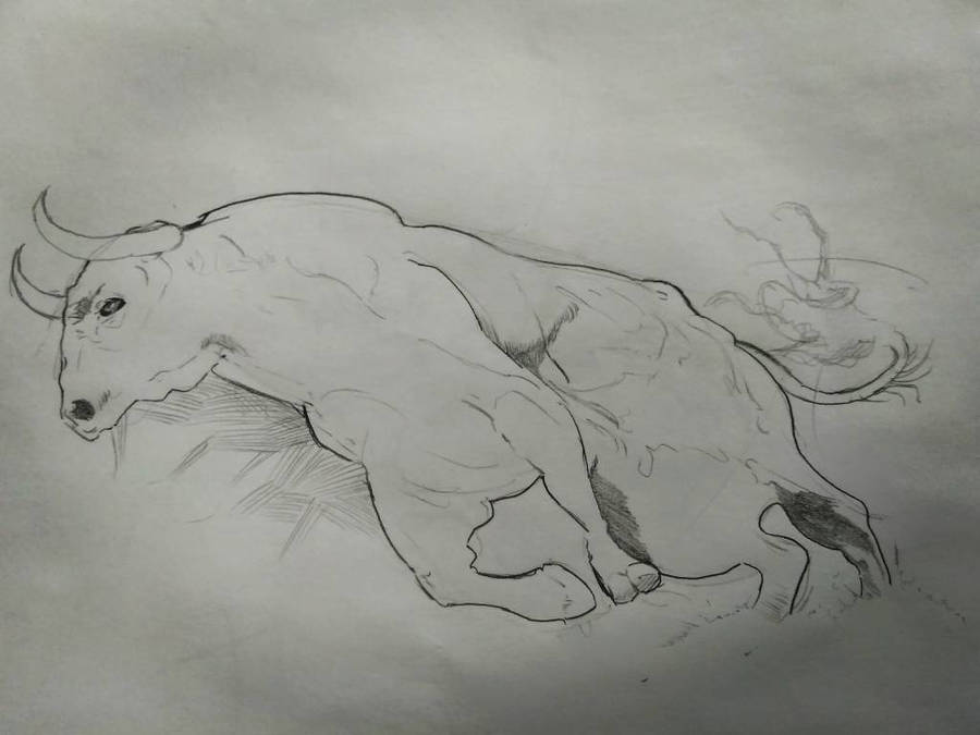 Lunch Hour Sketch: Ferocity by MichiruYami