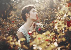 Perfume of roses by anaispopy