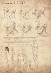 Leonardo D20, day01 compared anatomy by b-cesar
