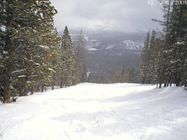 Look, it's snowing by Stormgren