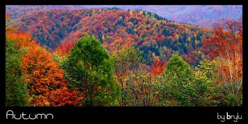 Autumn by brylu