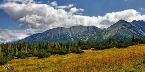 Mountain landscape by miirex