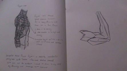 Torso/Arm Study by PIDKID