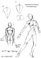 Drawing The Female Figure by ClaytonBarton