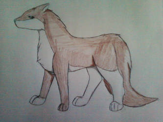 Wolf, un named at present time by LoneWolf0223