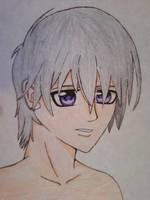 Zero Kiryu Finished by LoneWolf0223