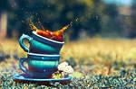 Splash by Tamerlana