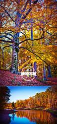 Hideaway Park - Set 3 by Ryan Lord by RyanLord