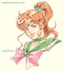 Sailor Jupiter Vignette by saniika