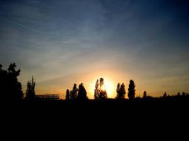 Sunset at Pinery Park by Zarcher