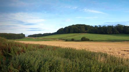 11-08-2014 Wiltshire VI by pdurdin